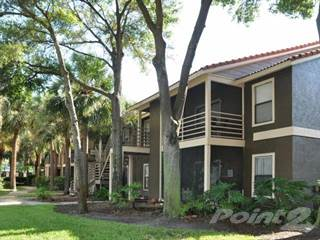 houses apartments for rent in tampa fl point2 homes