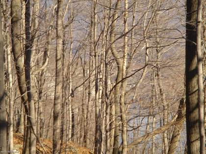 Lots And Land for sale in TBD Rocky Hollow Road, Pembroke, VA, 24136