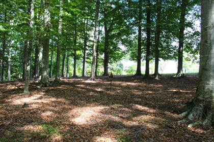 Lots And Land for sale in 300 The Village Dr, Nancy, KY, 42544