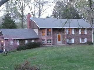Single Family for sale in 176 Brock Lane, Murphysboro, IL, 62966