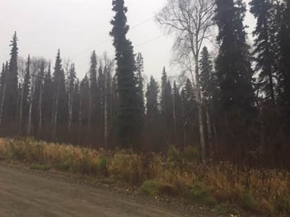 Lots And Land for sale in NHN OLD SITE ROAD, Salcha, AK, 99714