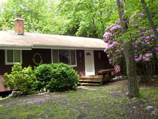 Single Family for rent in 1205 Thunder Dr, Pocono Summit, PA, 18346