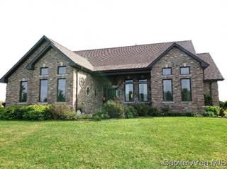 Single Family for sale in 2751 LUKEMAN RD, Franklin, IL, 62638
