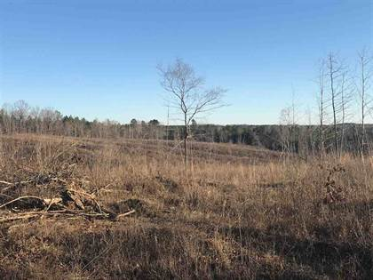 Lots And Land for sale in PROVIDENCE RD, Banner, MS, 38913