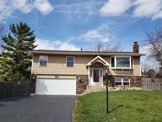 Single Family for sale in 632 South Vista Drive, Algonquin, IL, 60102