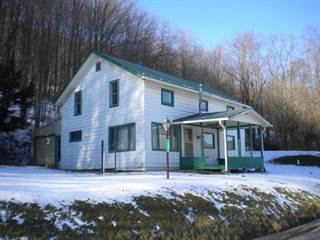 Single Family for sale in 1248 Ellisburg Road, Greater Oswayo, PA, 16923