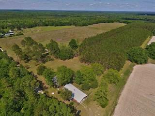 Single Family for sale in 650 Treeline, Greater Sneads, FL, 32442