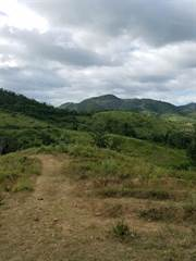 Land for sale in Km 10.3 CARR 712, Guayama, PR, 00784