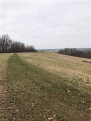 Land for sale in 6845 Roy Andrews Rd Northwest, New Philadelphia, OH, 44663