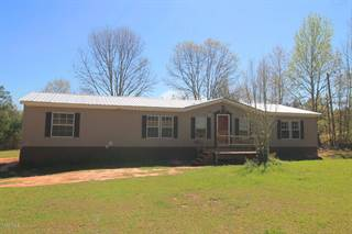 Residential Property for sale in 13186 Brushy Creek Rd, Lucedale, MS, 39451