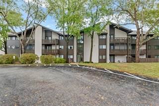 Condo for sale in 1380 Heritage Landing 204, Saint Charles, MO, 63303