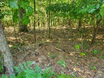 Lots And Land for sale in Lot 962 Spruce  DR, Greater Garfield, AR, 72756