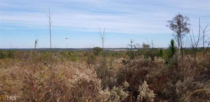 Farm And Agriculture for sale in 206 Southland Rd, Butler, GA, 31006