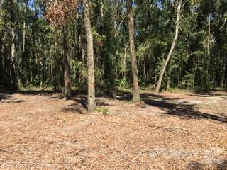 Residential Property for sale in TBD CR 349, O'Brien, FL, 32071