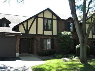 Condo for sale in 11315 SYCAMORE Lane 69D, Palos Hills, IL, 60465