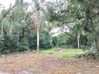 Land for sale in 2906 E 147TH AVENUE, Tampa, FL, 33559