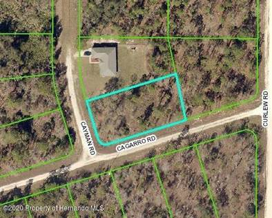 Lots And Land for sale in 16364 Cayman Road, Weeki Wachee, FL, 34614