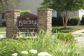 Apartment for rent in The Birches Apartments - Canoe Studio, Joliet, IL, 60435