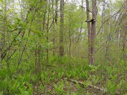 Lots And Land for sale in 741 S M-30, Gladwin, MI, 48624