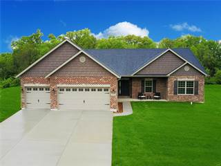 Single Family for sale in 419 Carr Creek Drive, Columbia, IL, 62236