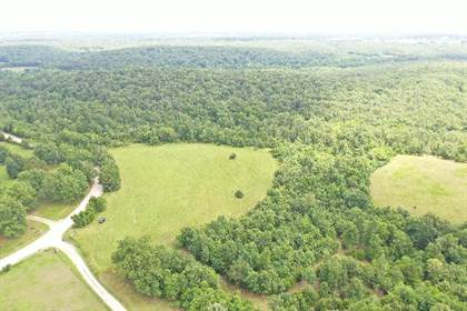 Residential Property for sale in 110 Latimer Rd, Long Lane, MO, 65590