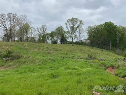 Farm for sale in 0 BarBQue Road, Dickson, TN, 37055