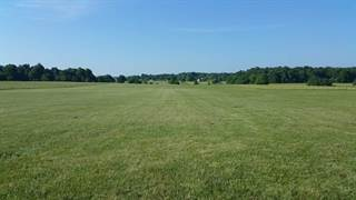 Land for sale in 8000 West Farm Rd 124, Greater Republic, MO, 65802