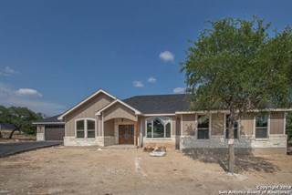 Single Family for sale in 319 STARS AND STRIPES, Fischer, TX, 78623