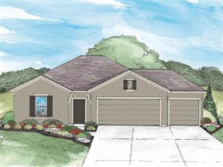 Single Family for sale in 1012 Clayton Drive, Raymore, MO, 64083