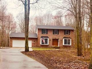 Single Family for sale in 2455 N Woodland Estates Dr, Larkin, MI, 48642