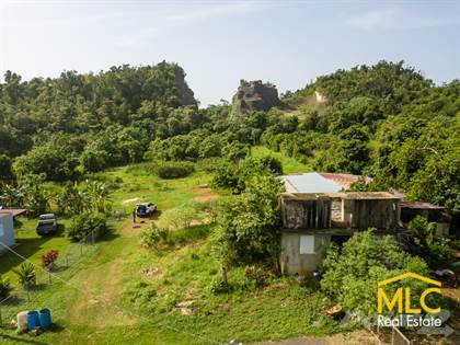 Lots And Land for sale in CAM740S - Sector Palomar, Camuy, PR, 00627