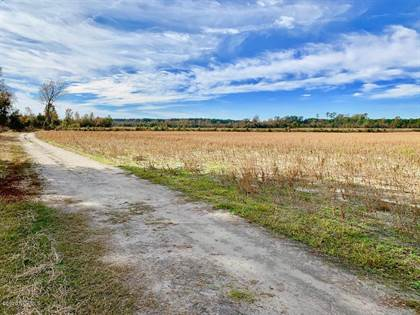 Lots And Land for sale in 00 Hwy 55, Greater Cove City, NC, 28526