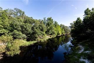 Single Family for sale in 5301 OLIVET DRIVE, Ridge Manor, FL, 33523