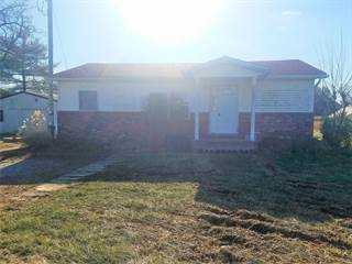 Single Family for sale in 4134 Black Jack Road, Red Bud, IL, 62278