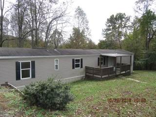 Single Family for sale in 142 COYOTE DRIVE, Pax, WV, 25904