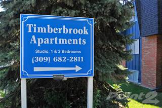 Apartment for rent in Timberbrook Apartments - 2-Bed/1-Bath, Delphinium, Peoria, IL, 61614