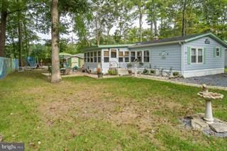 Single Family for sale in 37289 CAROLINA DR, Frankford, DE, 19945