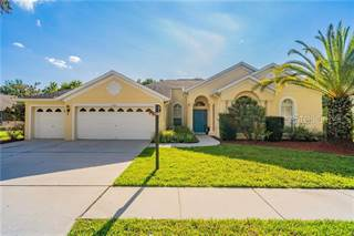 Single Family for sale in 5723 TANAGERSIDE ROAD, Fish Hawk, FL, 33547