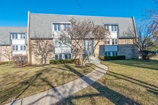 Condo for sale in 2021 Ammer Ridge Court 102, Glenview, IL, 60025