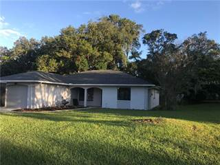 Single Family for sale in 504 UNDERWOOD AVENUE, Brooksville, FL, 34601