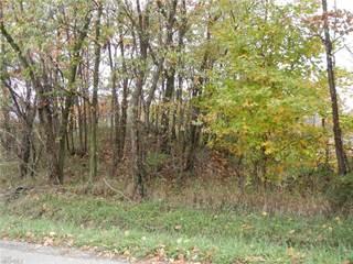 Land for sale in 8089 Nebraska Rd Northwest, Dundee, OH, 44624