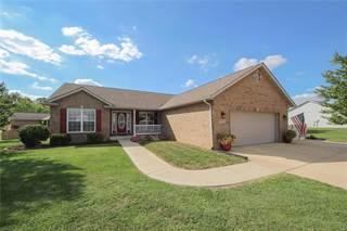 Single Family for sale in 10924 Fallowfield Drive, Lebanon, IL, 62254