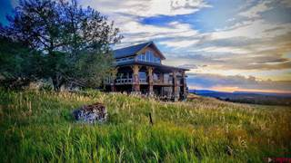 Single Family for sale in 2672 Antler Court, Crawford, CO, 81415
