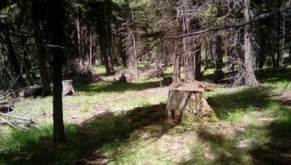 Lots And Land for sale in 383 Stagecoach Drive, Seeley Lake, MT, 59868