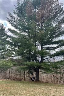 Lots And Land for sale in 952 Selleck Road, Greater Hannawa Falls, NY, 13625