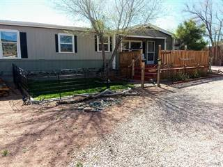 Single Family for sale in 10 Rockrimmon Rd, Williamsburg, CO, 81226