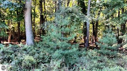 Lots And Land for sale in N/A Rumsey Road, Au Gres, MI, 48703