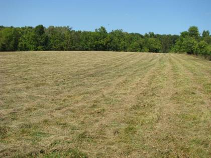 Lots And Land for sale in 000 South Valley View Lane, Springfield, MO, 65809