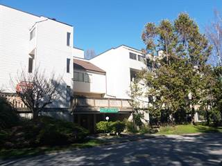 Apartment for rent in 1bedroom & 3bedroom available - 8751 Citation Dr, Richmond, British Columbia