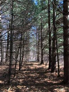 Lots And Land for sale in SPERRY ROAD, Chesterland, OH, 44026